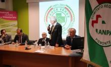 Croce_Verde_Torino110